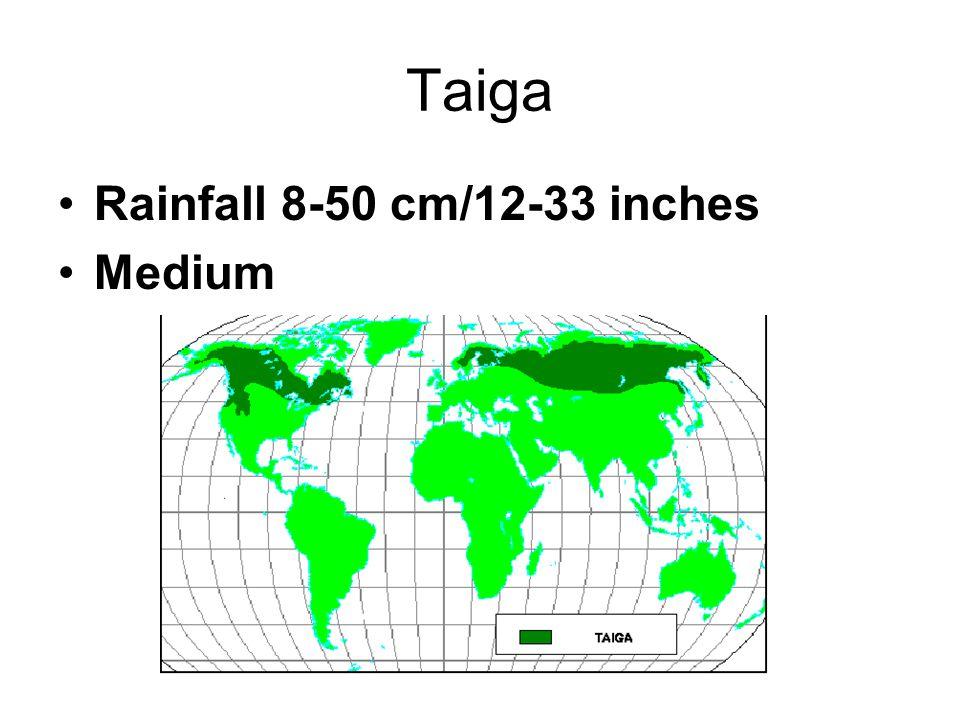 Taiga Rainfall 8-50 cm/12-33 inches Medium
