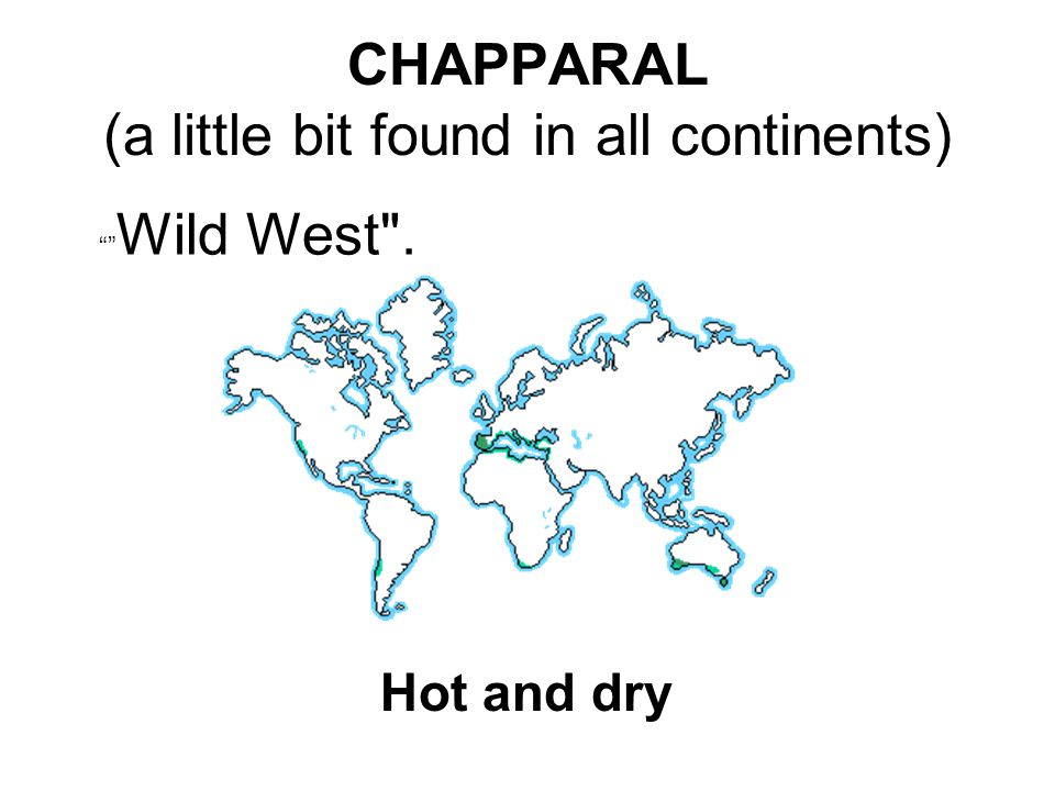 CHAPPARAL (a little bit found in all continents) Wild West . Hot and dry