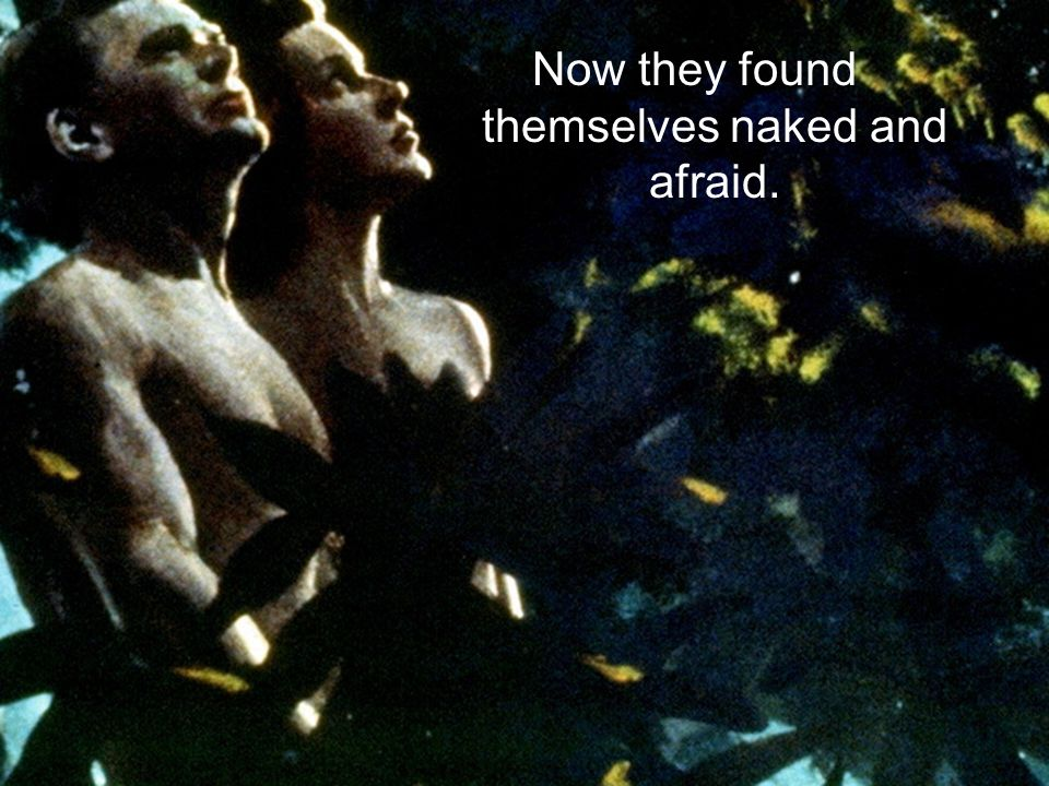Now they found themselves naked and afraid.