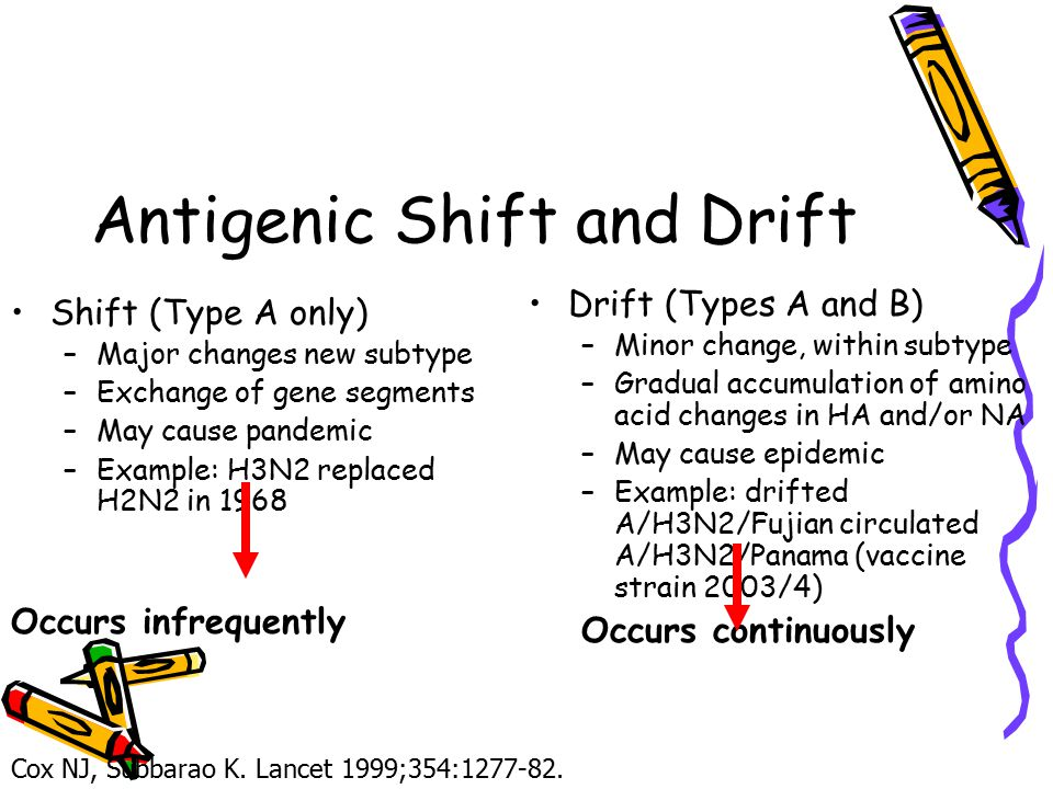 Antigenic Shift and Drift Shift (Type A only) –Major changes new subtype –Exchange of gene segments –May cause pandemic –Example: H3N2 replaced H2N2 in 1968 Occurs infrequently Drift (Types A and B) –Minor change, within subtype –Gradual accumulation of amino acid changes in HA and/or NA –May cause epidemic –Example: drifted A/H3N2/Fujian circulated A/H3N2/Panama (vaccine strain 2003/4) Occurs continuously Cox NJ, Subbarao K.