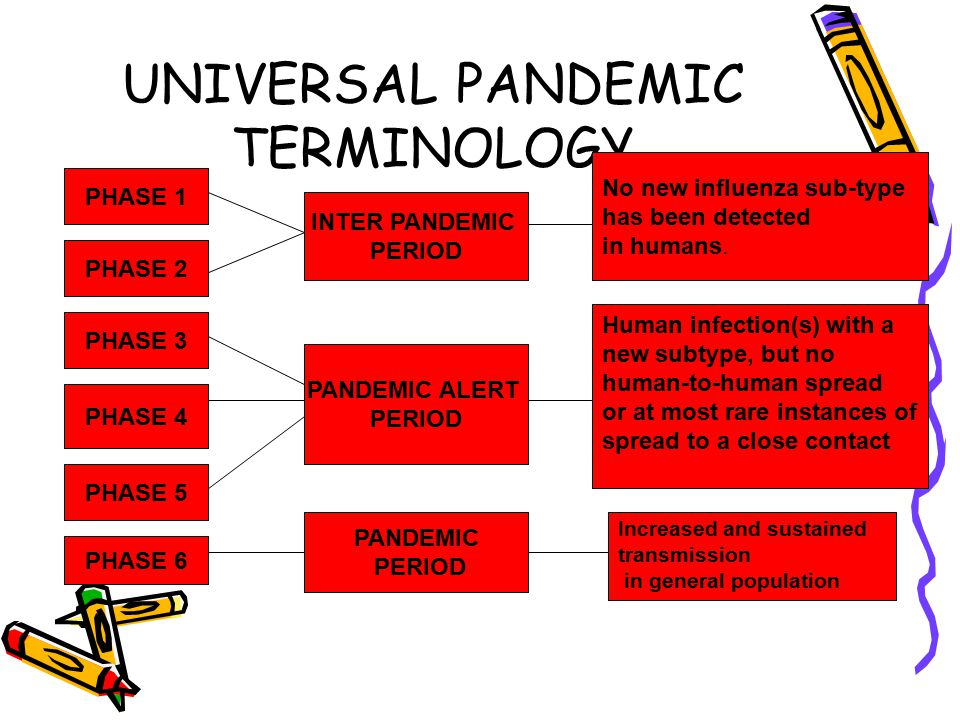 UNIVERSAL PANDEMIC TERMINOLOGY PHASE 2 INTER PANDEMIC PERIOD PHASE 3 PHASE 4 PHASE 5 PHASE 6 PHASE 1 PANDEMIC ALERT PERIOD PANDEMIC PERIOD Increased and sustained transmission in general population No new influenza sub-type has been detected in humans.