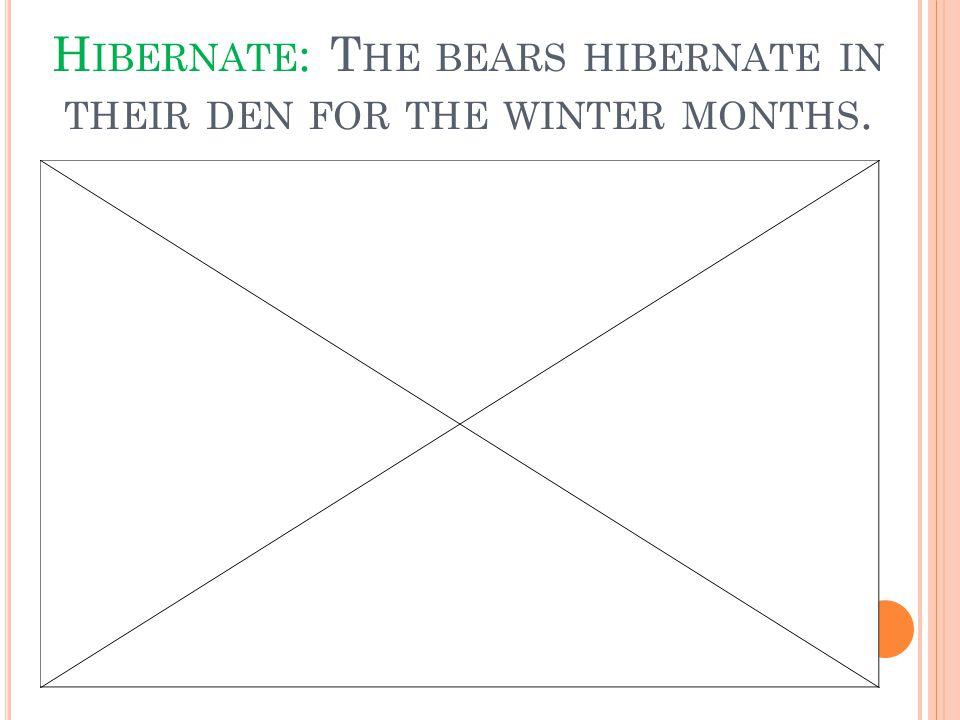 H IBERNATE : T HE BEARS HIBERNATE IN THEIR DEN FOR THE WINTER MONTHS.