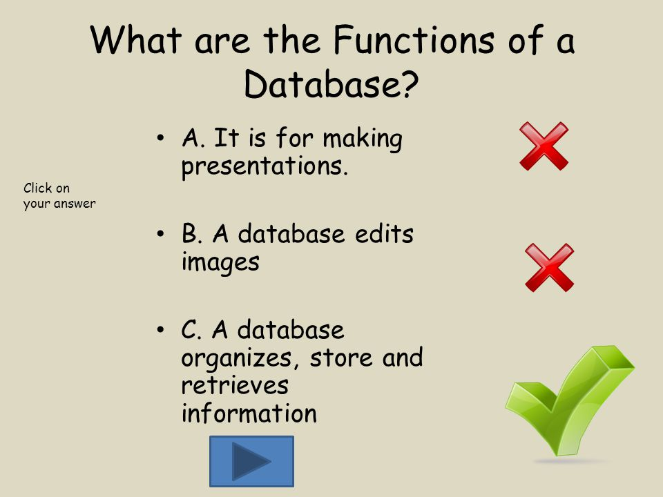 What are the Functions of a Database. A. It is for making presentations.