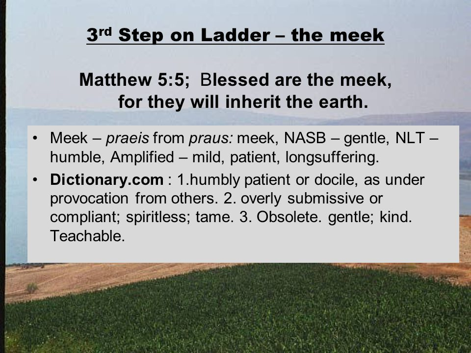 3 rd Step on Ladder – the meek Matthew 5:5; Blessed are the meek, for they will inherit the earth.