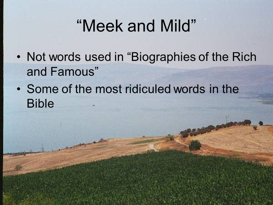 Meek and Mild Not words used in Biographies of the Rich and Famous Some of the most ridiculed words in the Bible