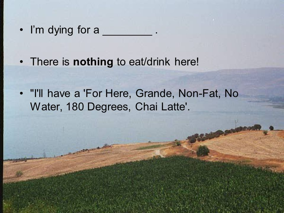 I'm dying for a ________. There is nothing to eat/drink here!