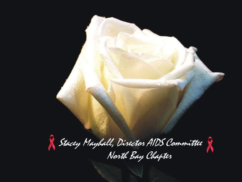 Stacey Mayhall, Director AIDS Committee North Bay Chapter