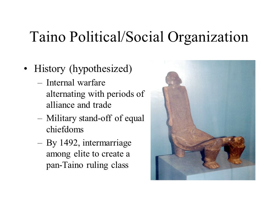 Taino Political/Social Organization History (hypothesized) –Internal warfare alternating with periods of alliance and trade –Military stand-off of equal chiefdoms –By 1492, intermarriage among elite to create a pan-Taino ruling class