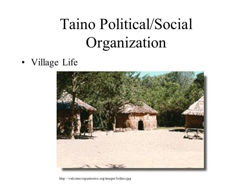 Taino Political/Social Organization Village Life http://welcome.topuertorico.org/images/bohios.jpg