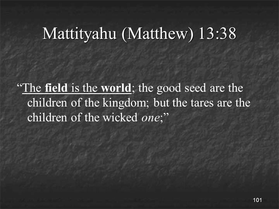 101 Mattityahu (Matthew) 13:38 The field is the world; the good seed are the children of the kingdom; but the tares are the children of the wicked one;