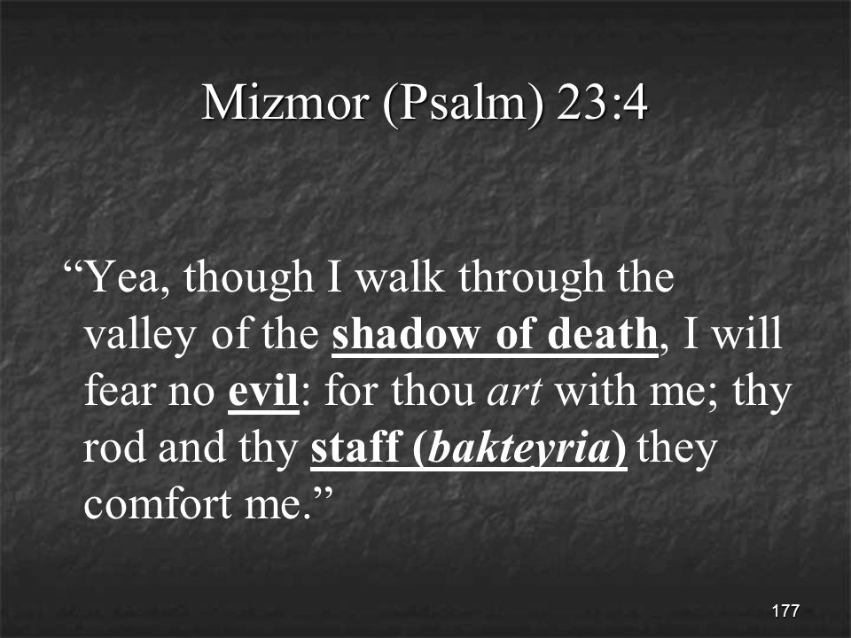 177 Mizmor (Psalm) 23:4 Yea, though I walk through the valley of the shadow of death, I will fear no evil: for thou art with me; thy rod and thy staff (bakteyria) they comfort me.