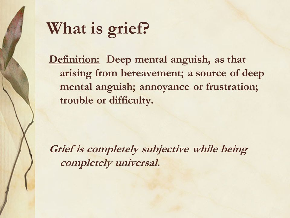 What is grief? Definition: Deep mental anguish, as that arising from bereavement; a source of deep mental anguish; annoyance or frustration; trouble o