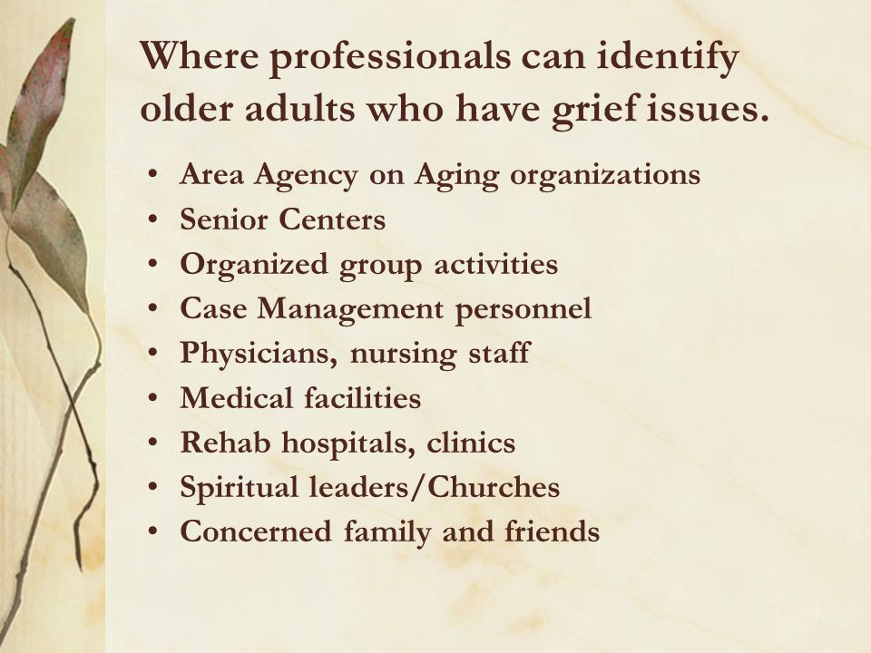 Where professionals can identify older adults who have grief issues. Area Agency on Aging organizations Senior Centers Organized group activities Case