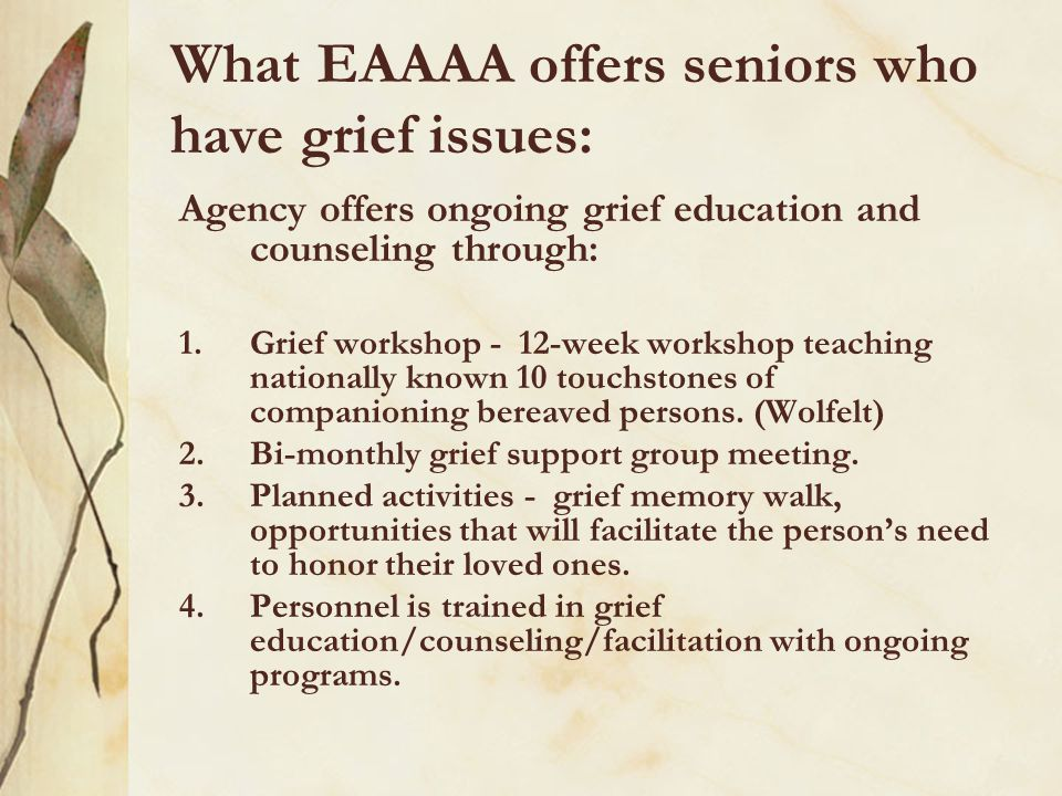 What can be offered to your older adults.