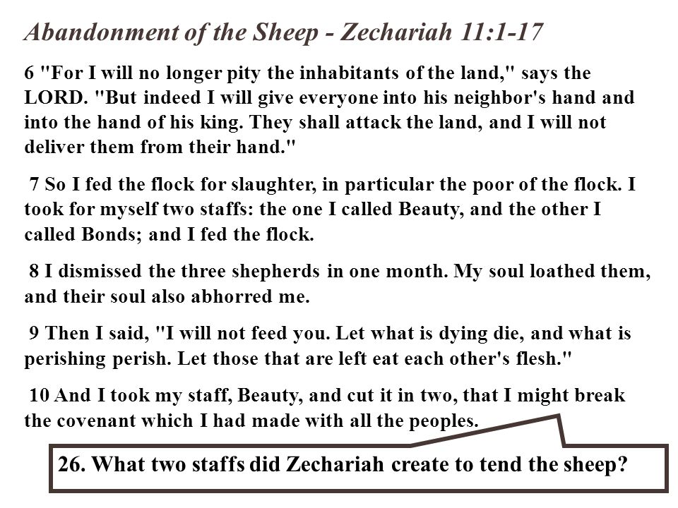 Abandonment of the Sheep - Zechariah 11:1-17 6 For I will no longer pity the inhabitants of the land, says the LORD.