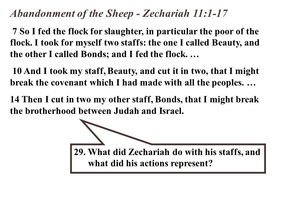 Abandonment of the Sheep - Zechariah 11:1-17 7 So I fed the flock for slaughter, in particular the poor of the flock. I took for myself two staffs: th