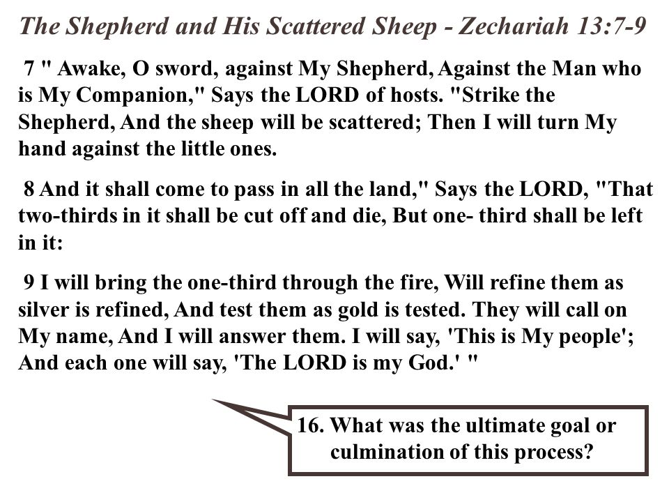 The Shepherd and His Scattered Sheep - Zechariah 13:7-9 7 Awake, O sword, against My Shepherd, Against the Man who is My Companion, Says the LORD of hosts.