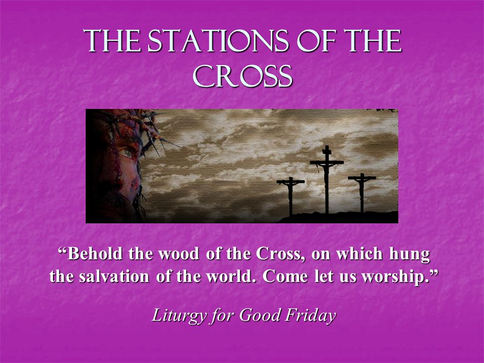 The Stations of the Cross Behold the wood of the Cross, on which hung the salvation of the world.