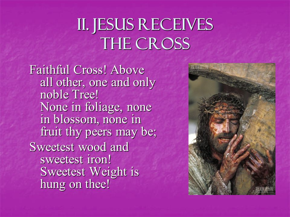 Ii. Jesus RECEIVES THE CROSS Faithful Cross. Above all other, one and only noble Tree.