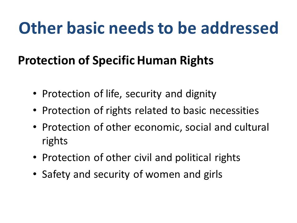 Other basic needs to be addressed Protection of Specific Human Rights Protection of life, security and dignity Protection of rights related to basic n