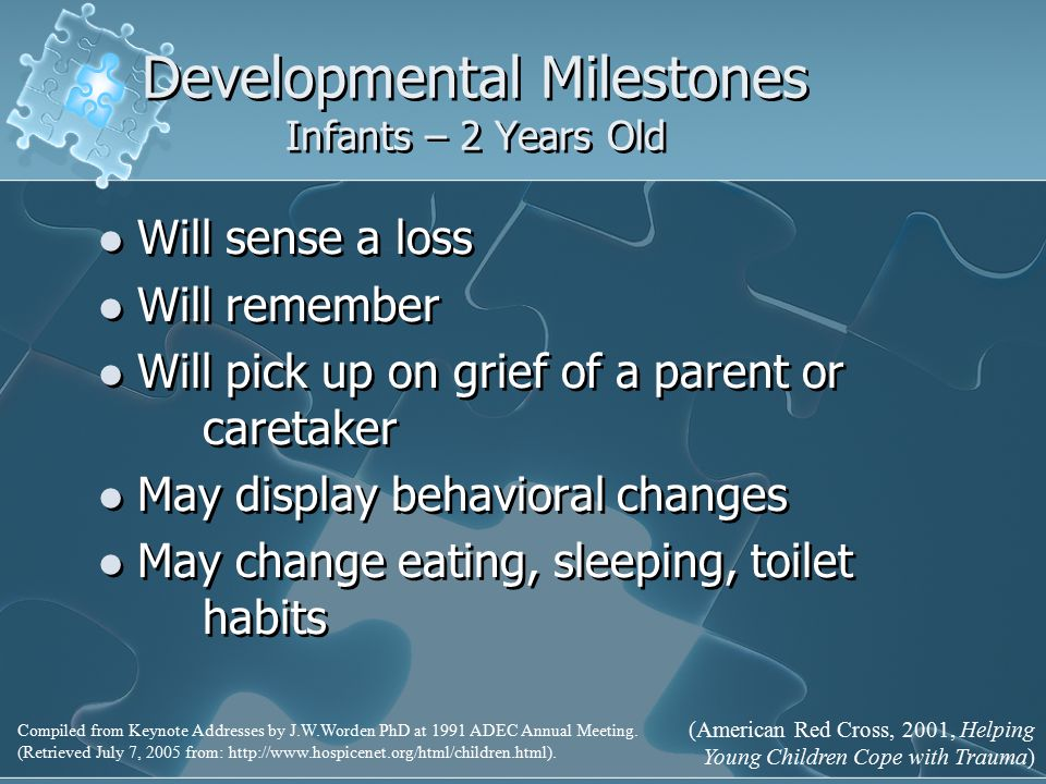 Developmental Milestones Infants – 2 Years Old Will sense a loss Will remember Will pick up on grief of a parent or caretaker May display behavioral changes May change eating, sleeping, toilet habits Will sense a loss Will remember Will pick up on grief of a parent or caretaker May display behavioral changes May change eating, sleeping, toilet habits Compiled from Keynote Addresses by J.W.Worden PhD at 1991 ADEC Annual Meeting.