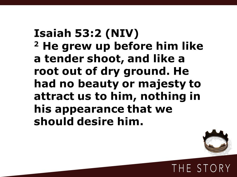 Isaiah 53:2 (NIV) 2 He grew up before him like a tender shoot, and like a root out of dry ground.