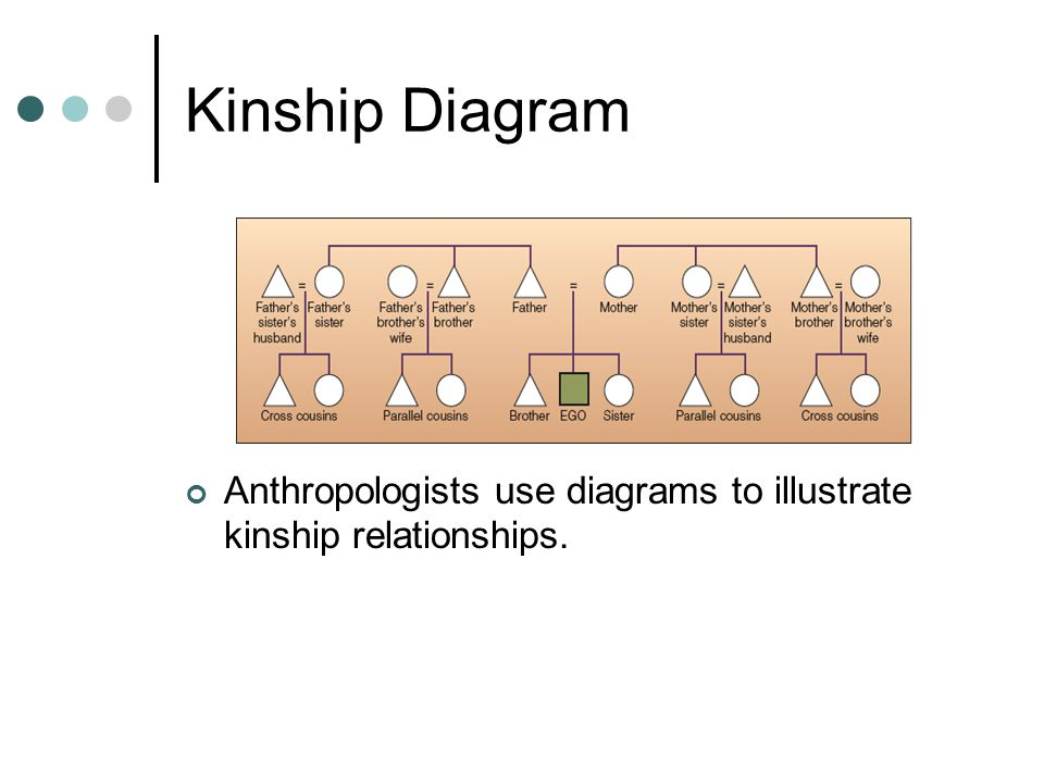 Kinship Diagram Anthropologists use diagrams to illustrate kinship relationships.