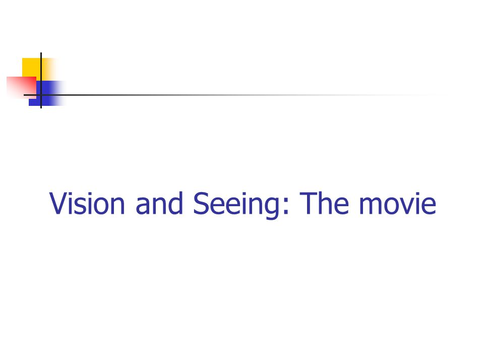 Vision and Seeing: The movie