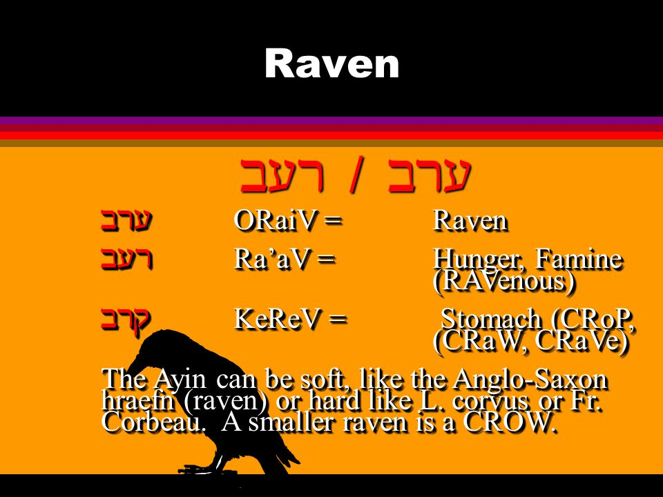 Raven   ORaiV = Raven  Ra'aV = Hunger, Famine (RAVenous)  KeReV = Stomach (CRoP, (CRaW, CRaVe) The Ayin can be soft, like the Anglo-Saxon hraefn (raven) or hard like L.
