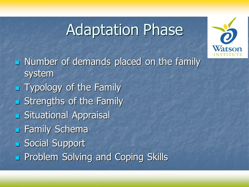 Adaptation Phase Number of demands placed on the family system Number of demands placed on the family system Typology of the Family Typology of the Family Strengths of the Family Strengths of the Family Situational Appraisal Situational Appraisal Family Schema Family Schema Social Support Social Support Problem Solving and Coping Skills Problem Solving and Coping Skills