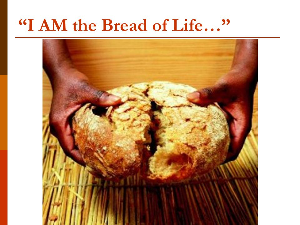 I AM the Bread of Life…