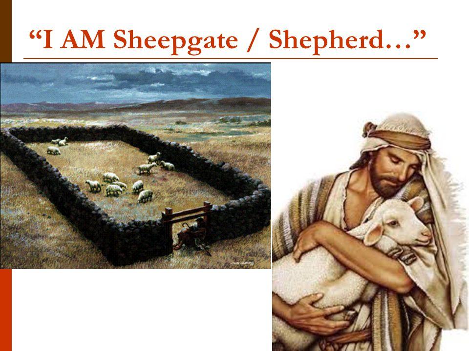 I AM Sheepgate / Shepherd…