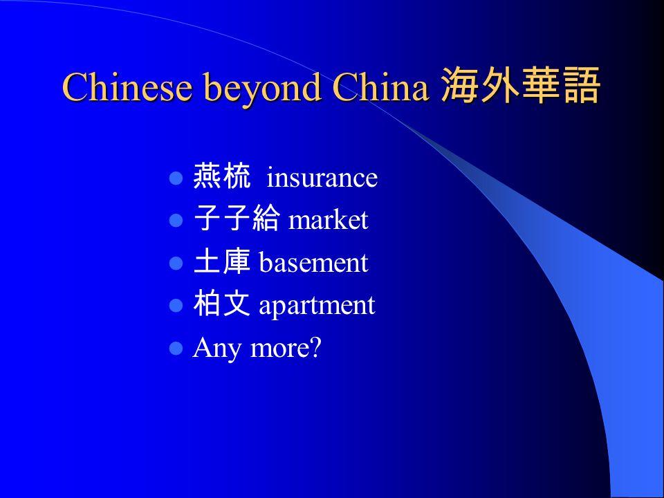 Chinese beyond China 海外華語 燕梳 insurance 子子給 market 土庫 basement 柏文 apartment Any more