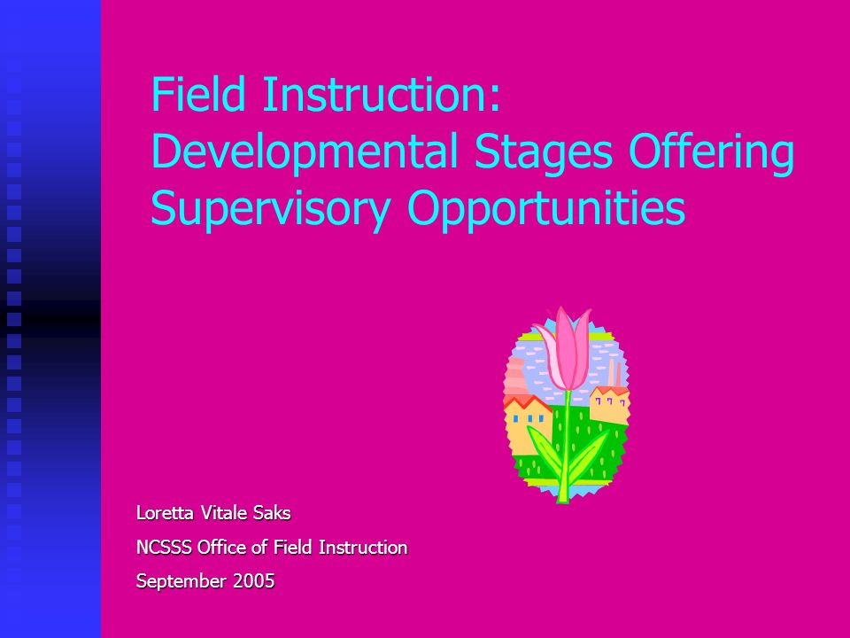 Field Instruction: Developmental Stages Offering Supervisory Opportunities Loretta Vitale Saks NCSSS Office of Field Instruction September 2005