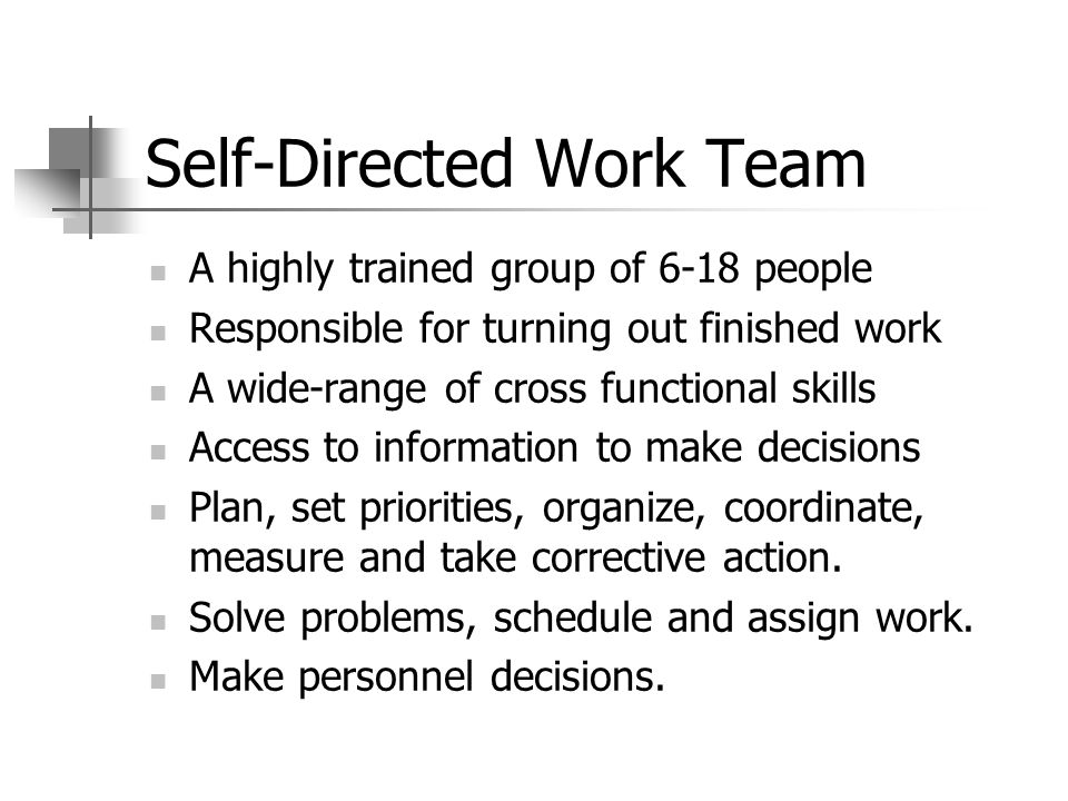 Stage Five (Self-Direction) Continue to respond to training needs.