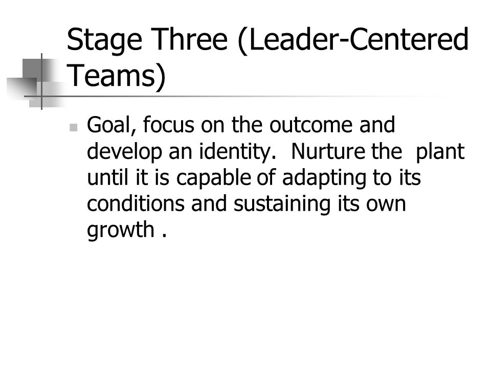 Stage Three (Leader-Centered Teams) Goal, focus on the outcome and develop an identity.