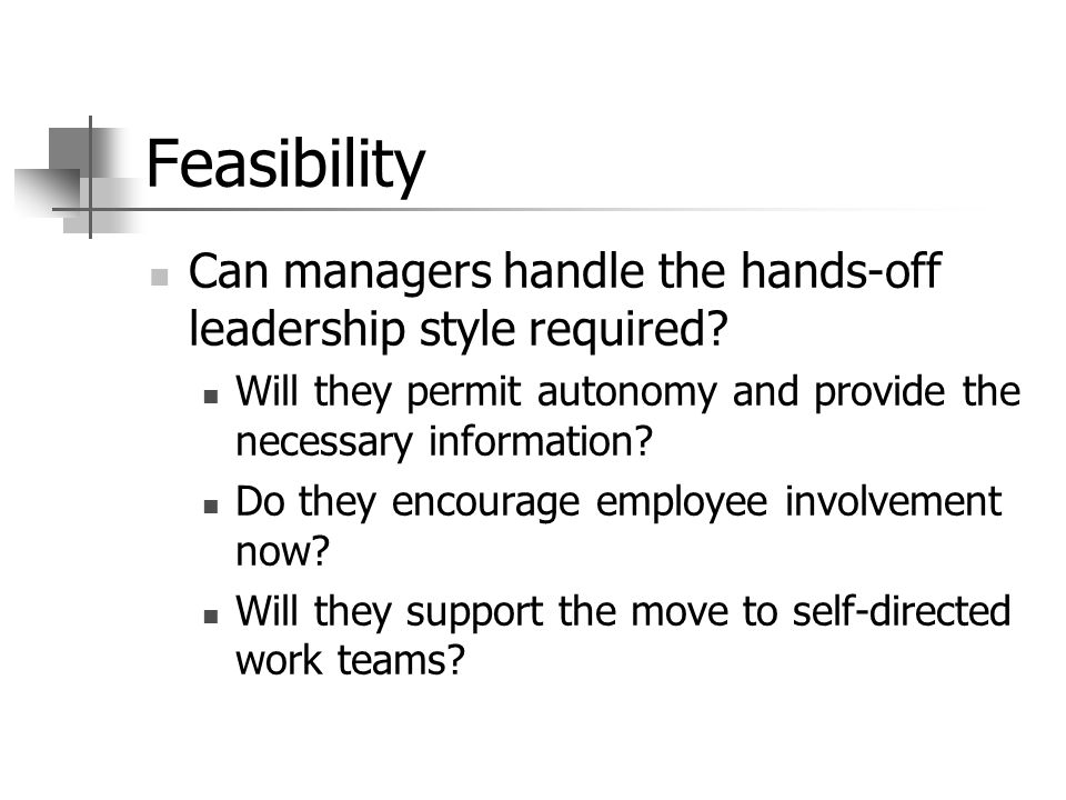 Feasibility Can managers handle the hands-off leadership style required.