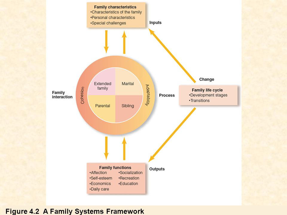 Figure 4.2 A Family Systems Framework