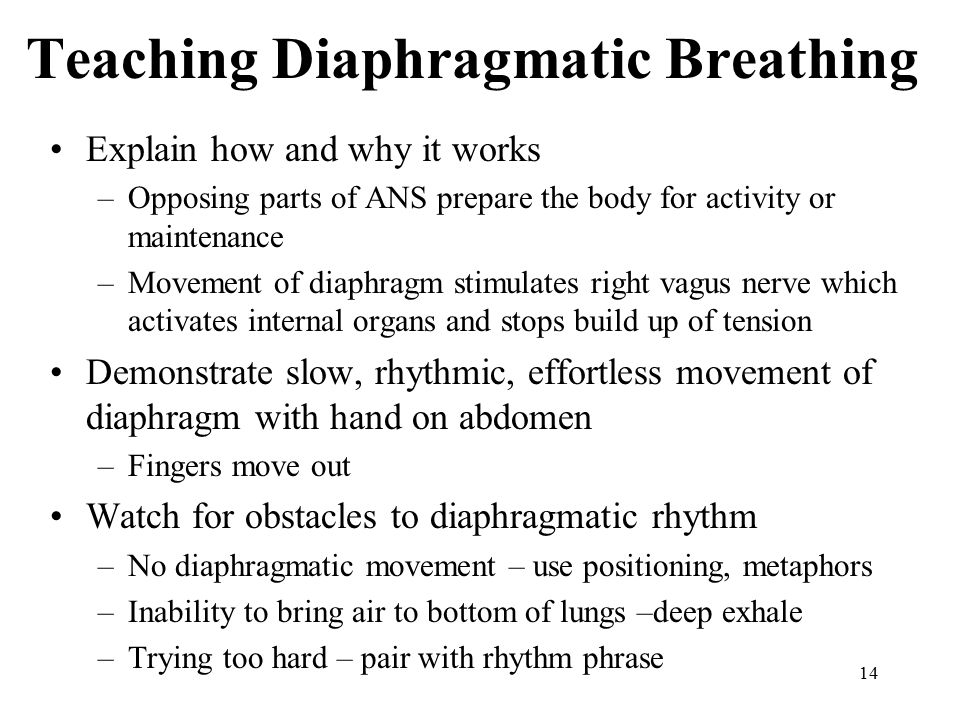14 Teaching Diaphragmatic Breathing Explain how and why it works –Opposing parts of ANS prepare the body for activity or maintenance –Movement of diap
