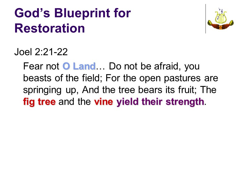 God's Blueprint for Restoration Joel 2:21-22 O Land fig tree vineyield their strength Fear not O Land… Do not be afraid, you beasts of the field; For