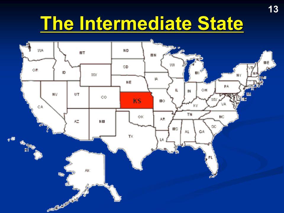 The Intermediate State 13