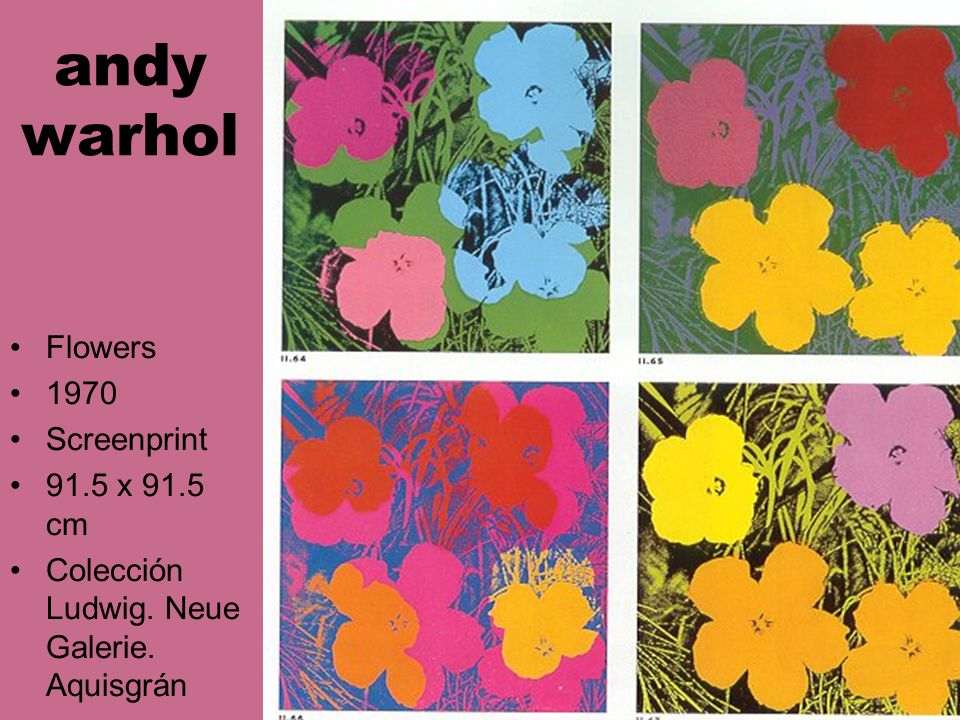 andy warhol Flowers 1970 Screenprint 91.5 x 91.5 cm Colección Ludwig. Neue Galerie. Aquisgrán