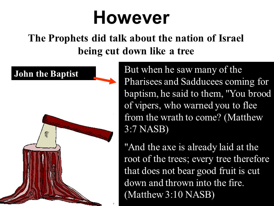 However The Prophets did talk about the nation of Israel being cut down like a tree But when he saw many of the Pharisees and Sadducees coming for bap