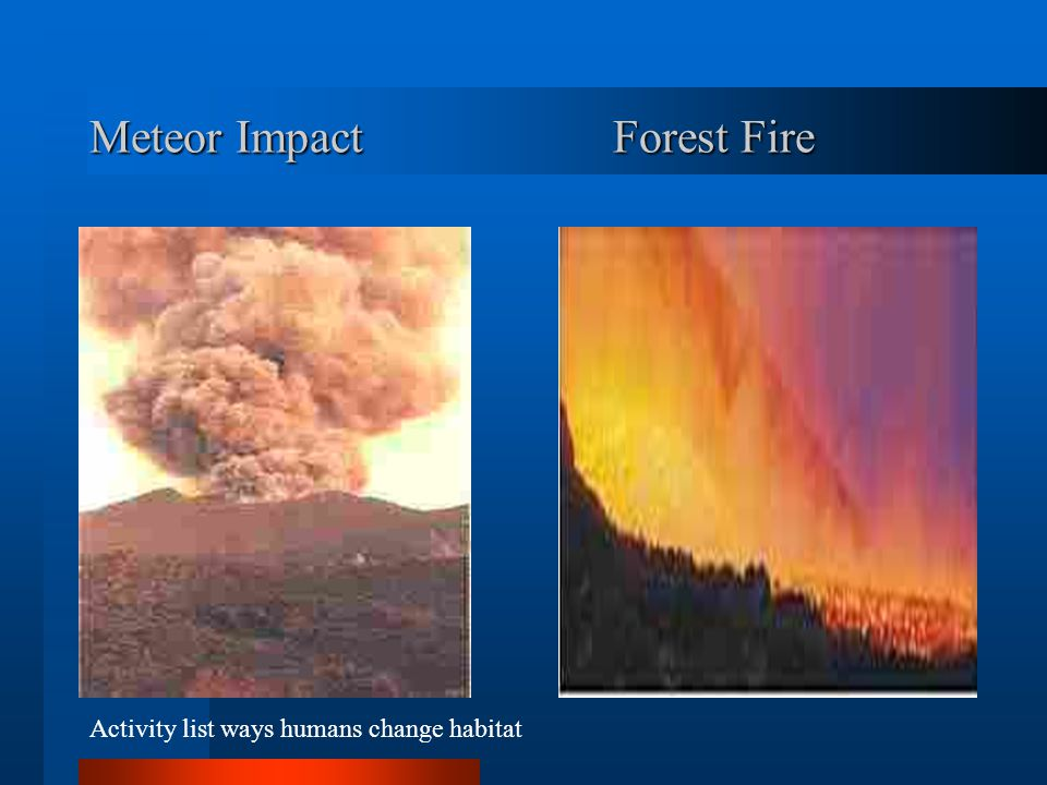Major Upheavals Ice Age Meteor Impacts Dramatic climate changes Fire Tornados Storms Floods Erosion