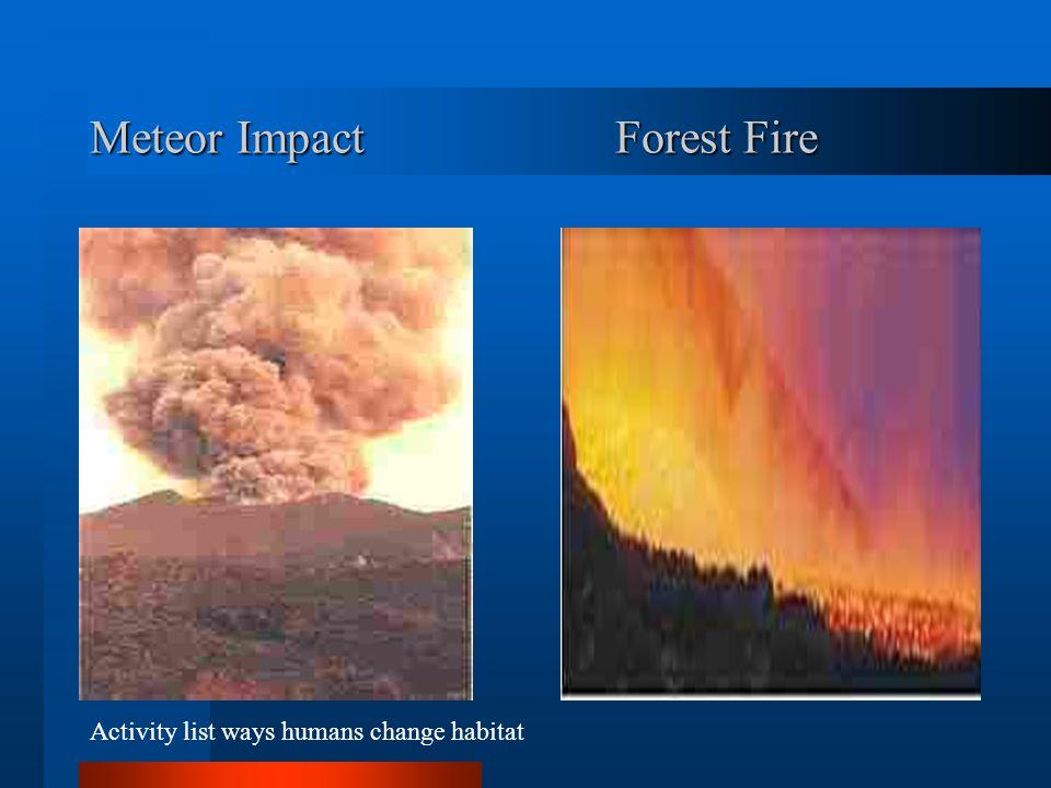 Meteor ImpactForest Fire Activity list ways humans change habitat
