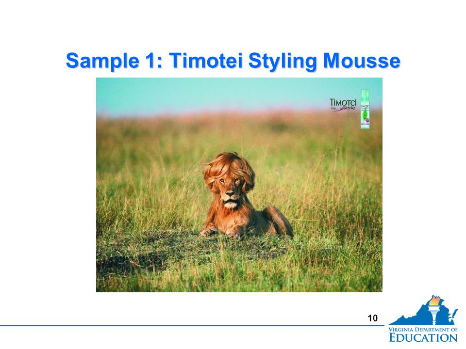 Sample 1: Timotei Styling Mousse 10