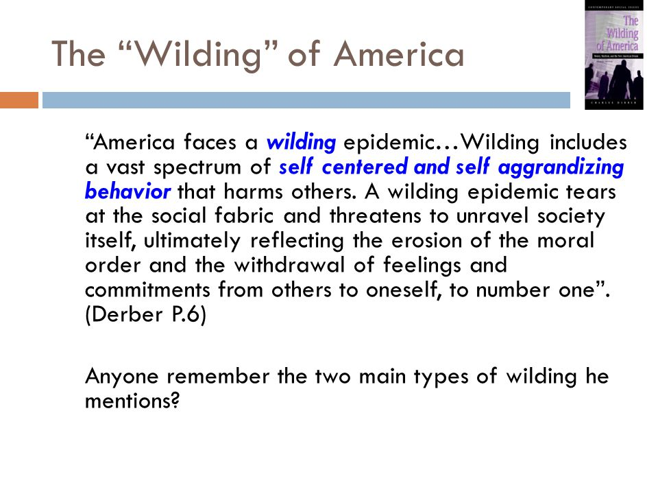 "The ""Wilding"" of America ""America faces a wilding epidemic…Wilding includes a vast spectrum of self centered and self aggrandizing behavior that harms"