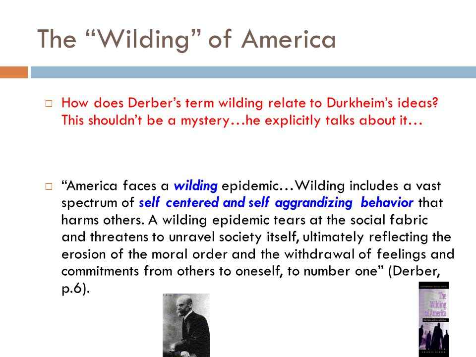 "The ""Wilding"" of America  How does Derber's term wilding relate to Durkheim's ideas? This shouldn't be a mystery…he explicitly talks about it…  ""Ame"