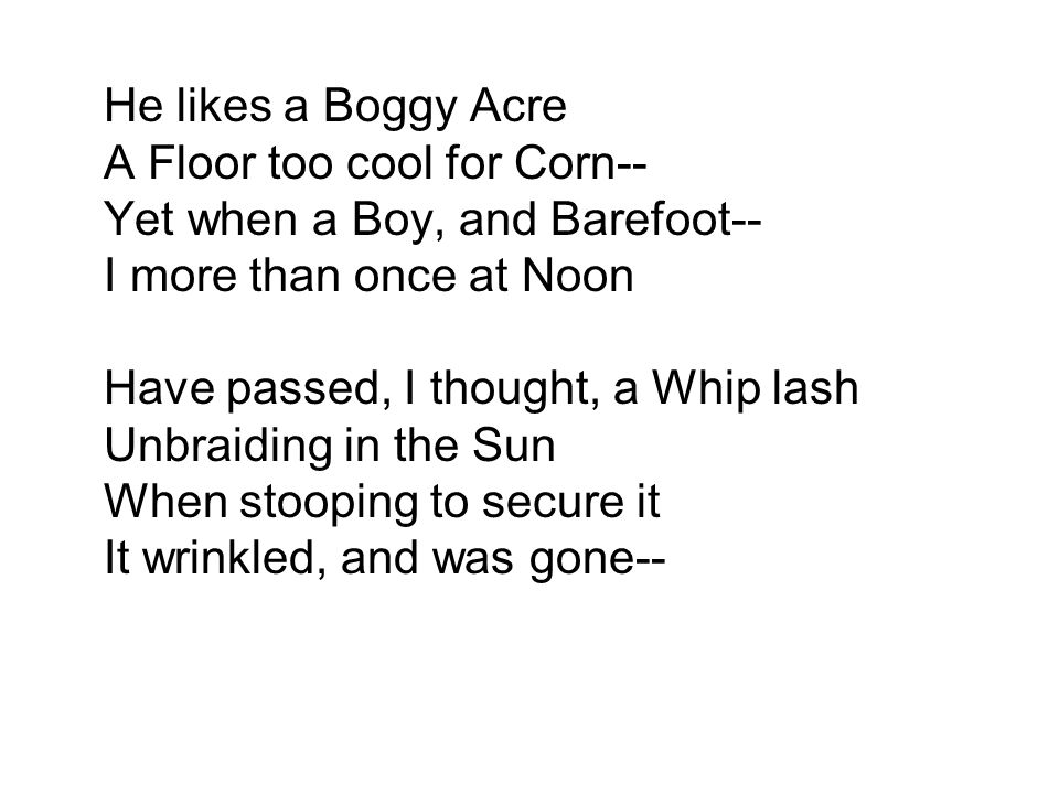 He likes a Boggy Acre A Floor too cool for Corn-- Yet when a Boy, and Barefoot-- I more than once at Noon Have passed, I thought, a Whip lash Unbraiding in the Sun When stooping to secure it It wrinkled, and was gone--