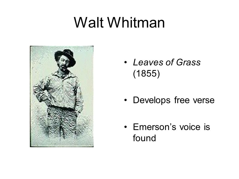 Walt Whitman Leaves of Grass (1855) Develops free verse Emerson's voice is found